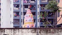 Mumbai Apartment Building (deepaqua) Tags: airconditioner balcony window india mumbai wall apartment tree laundry
