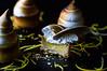 Lemon meringue moment of joy (Vanili11) Tags: food cookies desserts matchpointwinner t617