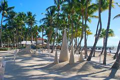 Key West (Florida) Trip 2016 0604Ri 4x6 (edgarandron - Busy!) Tags: florida keys floridakeys keywest higgsbeach casamarina