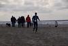 MML 2017 (Rooon) Tags: meeuwen makrelenloop 2017