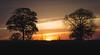 Savana Caipira (motaa.carlos) Tags: wild savana caipira roça fazenda interior são paulo ribeirão preto