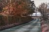 _MG_4809 The road from Kinkell Bridge to Auchterarder (ronniefleming@btinternet.com) Tags: kinkellbridge auchterarder ph31fy perthshire perthkinross visitscotland walkhighlands findogask bonniescotland