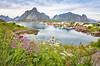 2017 Highlight: Lofoten (Ranveig Marie Photography) Tags: reine lofoten summer norge norway norwegen