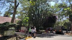 2017-12-28 14.10.27 (dcwpugh) Tags: travel nairobi kenya safari nairobinationalpark