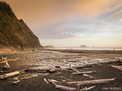 Humbug Beach (Nick Kanta) Tags: beach clouds color creek humbugmountain ocean oregon oregoncoast outdoorphotography sand sky sunset water wood iphone7 iphoneography