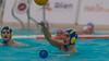 ATE_0143.jpg (ATELIER Photo.cat) Tags: 2017 action atelierphoto ball barcelona catalonia club cnmataroquadis cnrealcanoe competition dh game mataro match net nikon nikoneurope nikoneuropecompetition pallanuoto photo photographer playpool player polo pool professional sports vaterpolo wasserball water waterpolo wp wpm