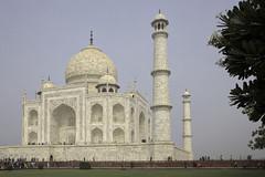 171104_058 (123_456) Tags: india agra uttar pradesh taj mahal shaj jahan yamuna mumtaz ustad ahmad lahauri mughal mausoleum