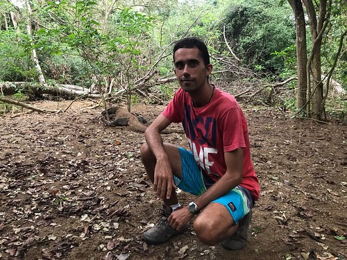 15 Komodo Island (4)