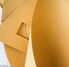 'Template' (Flip the Script) Tags: macro depth field paper texture fashion art sculpture 7dwf curve curves cut pattern shapes geometric