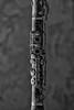 The Clarinet @ Ferme Hiboux Urbex (Jan Hoogendoorn) Tags: belgie belgium urbex urbanexploring vervallen verlaten abandoned decayed klarinet clarinet