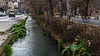 Water canal in Montana (Milen Mladenov) Tags: 2017 bulgaria montana montanesium alley canal car city park street water