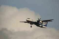 Bombardier Dash 8 (Teruhide Tomori) Tags: airplane aircraft japan japon itamiairport bombardieraerospace dehavillandcanadadash8 ボンバルディアdhc8q400 デ・ハビランド・カナダdhc8 bombardierdash8 dhc8 turboprop 日本 allnipponairways ana 全日空 sky bombardierqseries