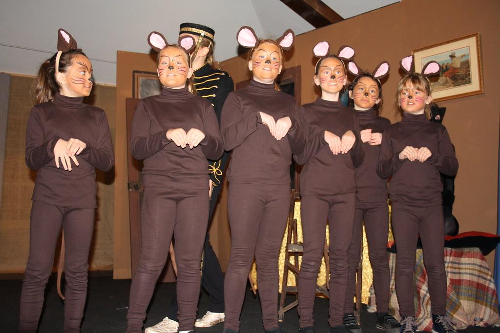 Cinderella mice 1