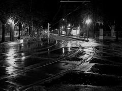 À la croisée des trams (floribes) Tags: blackandwhite nb bw noiretblanc railroad street strasbourg gx80 20mmf17 20mm