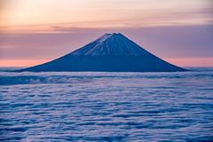 Fuji on the sea of clouds (shinichiro*) Tags: 山梨市 山梨県 日本 jp 20151113ds19852 2017 2015 crazyshin nikond4s afsnikkor70−200mmf28ged fuji seaofcloud 富士 雲海 国師岳 yamanashi japan november autumn 38593666834 2260924 201801gettyuploadesp