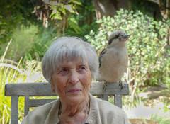 Only in Australia (Marian Pollock) Tags: melbourne victoria australia kookaburra woman together sitting tame upwey garden bird outdoors chair lady