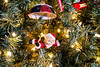 File-40 (fotodan57) Tags: indoors tree evergreen ornament lights white onelight