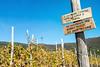 Prohibition banner sign in the vineyards of the Cinque Terre National Park - Liguria - Italy (PascalBo) Tags: nikon d500 europe italia italie italy liguria ligurie laspezia cinqueterre nationalpark parcnational vignoble vineyard vigne outdoor outdoors pascalboegli