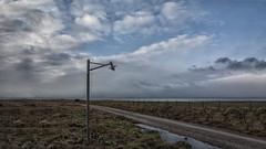 The Lamp 02 (Walter Johannesen) Tags: lampe lys gadelampe mark field lamp light street lampen licht strasenlampen