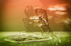 #MacroMondays #DoubleExposure (Mari Van Cauteren) Tags: watersplash stopshot surreal abstract pentaxk1 red green doubleexposure macromondays waterdrop