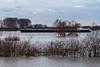 Monheim Rheindamm - 2018 - Hochwasser (KL57Foto) Tags: 2018 deutschland europa germany jahreszeitenundwetter januar january kl57foto kontinente monheim monheimamrhein nrw natur nordrheinwestfalen olympus penemp2 rheinland winter rhein fluss river hochwasser rhine