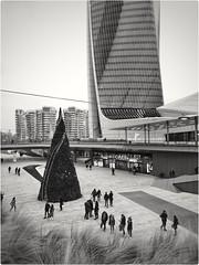 City life, Milano, Milano (B Plessi) Tags: citylife milano tretorri italia natale noel christmas tree albero arbre zahahadid tower