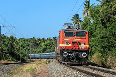 Metal snake (Jayfotographia) Tags: indianrailways kappil thiruvananthapuram kerala india anantapuriexpress train wap4 erodewap4 22221 trainspotting trainspo railpicturesnet curves gradients travel nature greenery jayasankarmadhavadas jayfotographia canon canoneos1200d photography