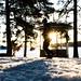 Kuopion Väinölänniemi tammikuussa 2018