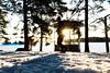 Kuopion Väinölänniemi tammikuussa 2018 (VisitLakeland) Tags: winter sun sunny snow tree forest nature kuopio finland lakeland capital