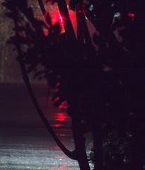 _MG_2902.CR2 (jalexartis) Tags: nightphotography night nightshots rain