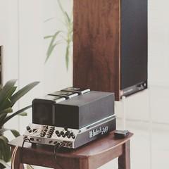 Mcintosh MC240 and JBL 4311 (I love film grains) Tags: mcintosh tube amplifier audio vintage music mc240 classic madeinusa jbl