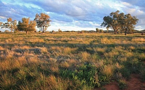 Address available on request, Condobolin NSW 2877