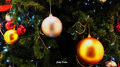 I bring you glad tidings! (2) (Jinky Dabon) Tags: fujifilmfinepixhs35exr christmasday festival festive merrychristmas celebration2017christmas nochebuena buonnatale holidays christmasholiday