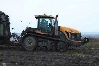Sugar Beet Harvest XXL | Challenger MT875 B