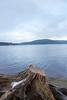 Stone Beach (Bulda9) Tags: stump stone beach mountain mountains lake forest winter december