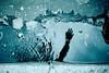 Paris de jour. (Idriss Arin) Tags: hand arty blue paris light water trottoir dreams yashicafx3 dark fujifilm filmcolour 35mm eau