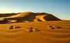 The footprints (missfisher') Tags: desert morocco ergchebbi samyang12mm olympus omdem5markii landscape travel goldenhour explored