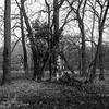 Berlin 27-12-2017-16 (Pure Natural Ingredients) Tags: berlin berlijn deutschland duitsland germany tiergarten tier garten dierentuin zoo animals black white schwarz weiss zwart wit