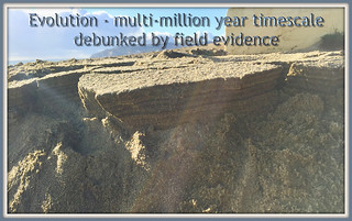 Evolution - multi-million year timescale debunked by stunning field evidence