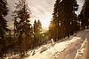Luce tra gli alberi (parolinfederico) Tags: a58 alberi varese paesaggio colori color campodeifiori neve freddo ghiaccio italia ice inverno sigma sigma1020 lights landscape lombardia lago montagna monte sony sonya58 sunset tramonto