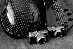 Les meves joguines (Fnikos) Tags: music stringedinstrument música instrument instrumento bouzouki bass bajo camera cámara photography fotografía indoor