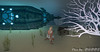Atlantis (7) (Poppys_Second_Life) Tags: 2l atlantis picsbyⓟⓞⓟⓟⓨ popi popisadventuresin2l popikone popikonesadventuresin2l poppy sl secondlife underthesea underwater virtualphotography nautilus sumbmersible submarine