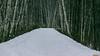 Sentier en hiver, Québec, Canada - 4113 (rivai56) Tags: villedequébec québec canada ca promenade dans le parc de la base plein air stefoy walk park photo prise début nuit