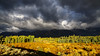 great light with dark sky (Marvin Bredel) Tags: jackson wyoming unitedstates us