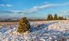 3 O'clock Shadow (Mac ind Óg) Tags: shadow eastrenfrewshire landscape winter munro cairn mountain dumgoyne walking marilyn benlomond scotland neilston snow