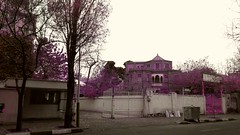 20171230_000144 (afs.harp) Tags: beauties tehran building tree sky iran