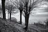 sur la colline de Mercurol (delphine imbert) Tags: noir blanc paysage black white nature brouillard arbre colline vestiges ruines histoire médiéval château