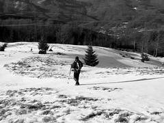 tél fekete-fehérben / winter in b&w (debreczeniemoke) Tags: tél winter túra hiking hegy mountain gutin erdély transilvania transylvania hó snow táj land tájkép landscape magaslat height csúcs top kilátás view szekatura secătura fehér fekete feketefehér black white blackandwhite bw olympusem5