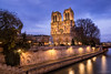 Notre Dame and its Chistmas tree (David Briard) Tags: ancien ancient architecture bleu blue bluehour bridge cathedral christmas church city cityscape gold heritage heurebleue historic historical historique history illuminated lampadaires lamps landscape medieval notredame old or paysage pont streetlights urbain urban xmas cathédrale noël paris france