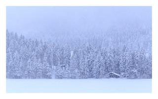 Leise rieselt der Schnee.